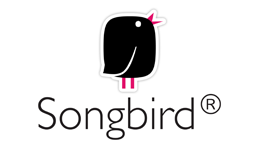 Songbird portable video